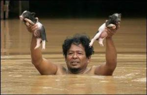 Bangkok Flood 2011
