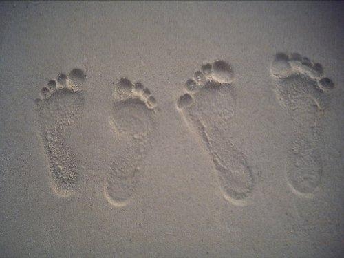 Footprint Favorites