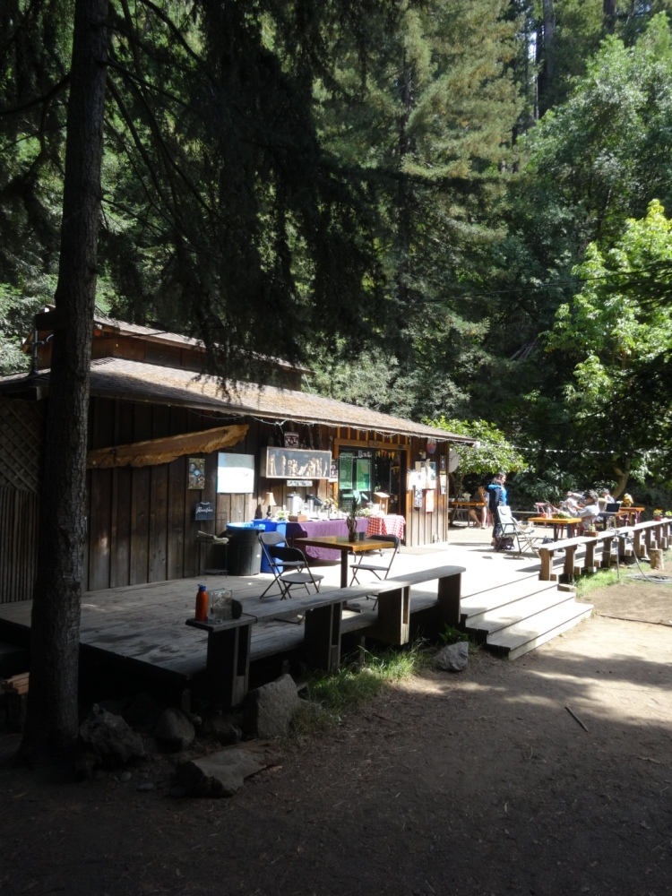 The Henry Miller Memorial Library in Big Sur, California (2/6)